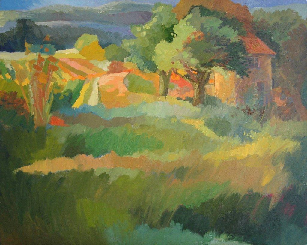 ( vendu ) Cabane dans les Vignes