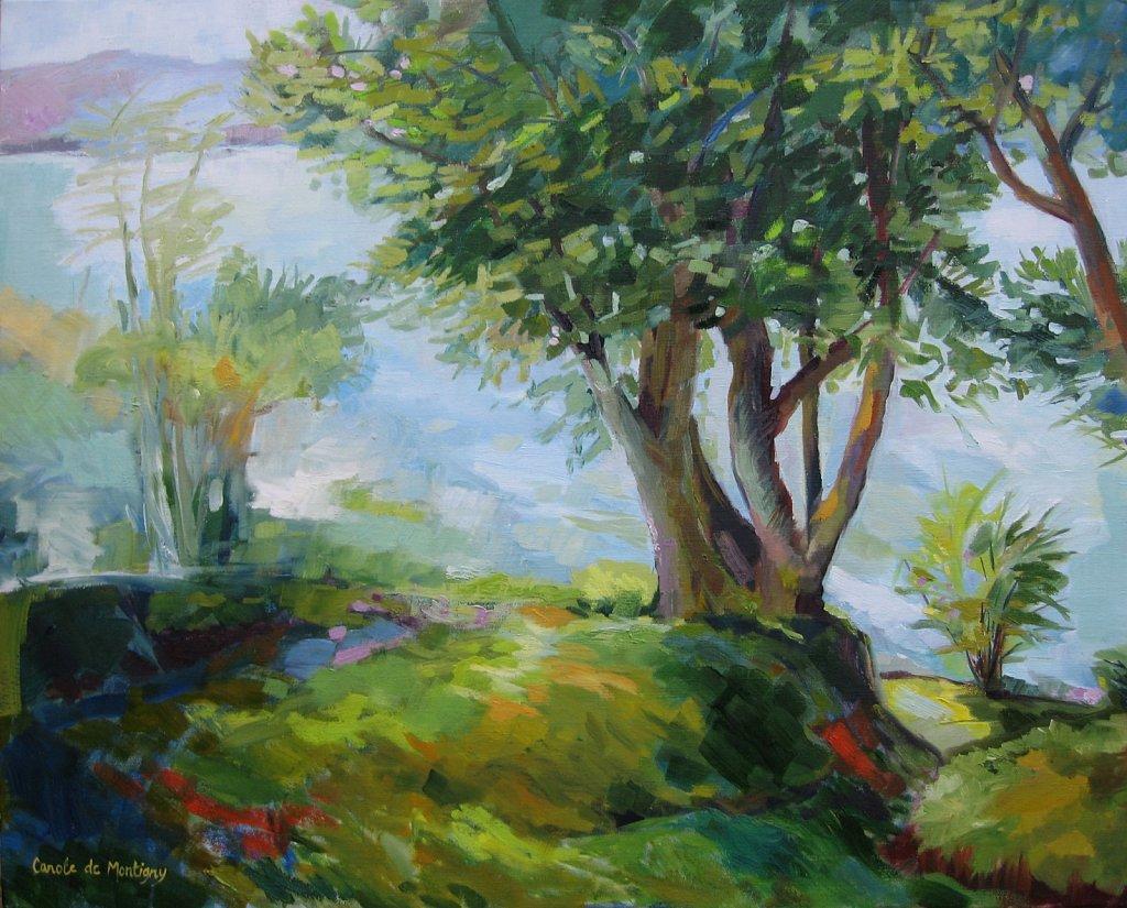 Chênes sur le Lac